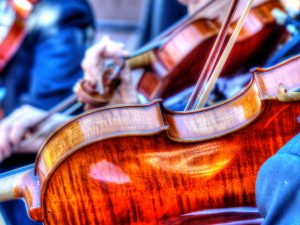 Strong Winds And Harmonious Strings at the Conservatory
